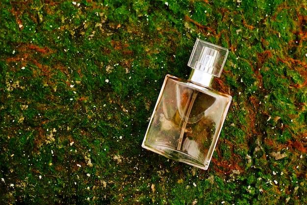 Butelka damskich perfum na tle zielonego morskiego mchu. widok z góry. zapach natury
