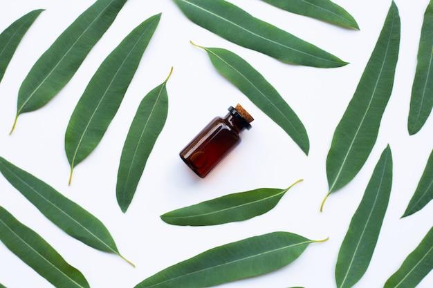 Butelka oleju eukaliptusowego z liśćmi na białym tle.