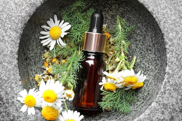Butelka z olejkiem eterycznym i świeżymi kwiatami rumianku w kamiennej misce