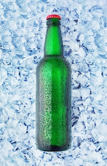 Butelki w lodzie