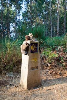 Buty turystyczne na kamiennym sygnale