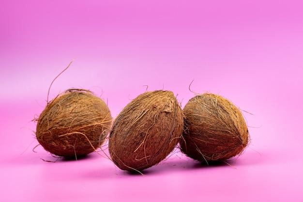 Całe orzechy kokosowe na różowym tle. trzy kudłate orzechy kokosowe leżą na na białym tle.