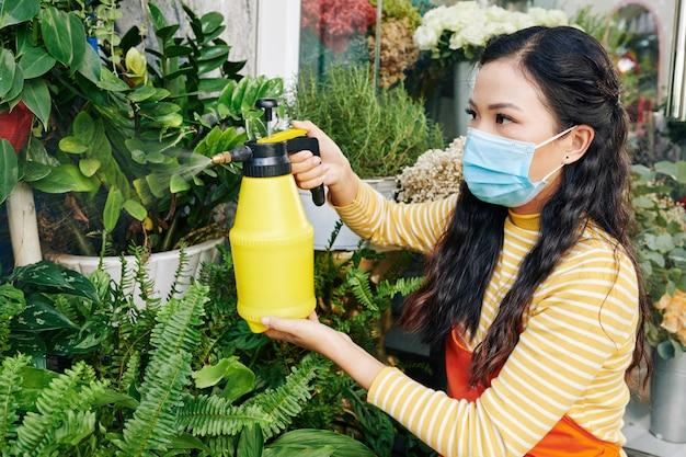 Całkiem poważna młoda wietnamska właścicielka kwiaciarni opatruje palmy wodą