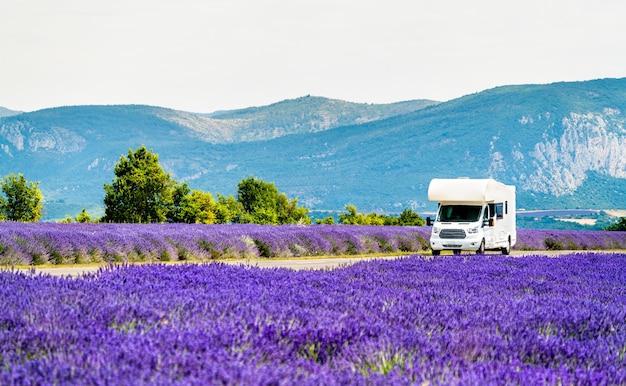 Campervan poruszający się po lawendowym polu w prowansji we francji