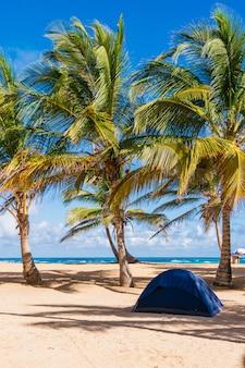 Camping na plaży