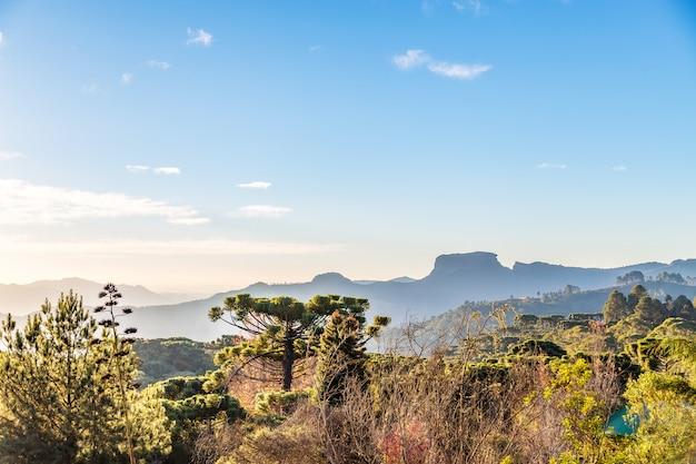 Campos do jordao, brazylia. widok pedra do bau