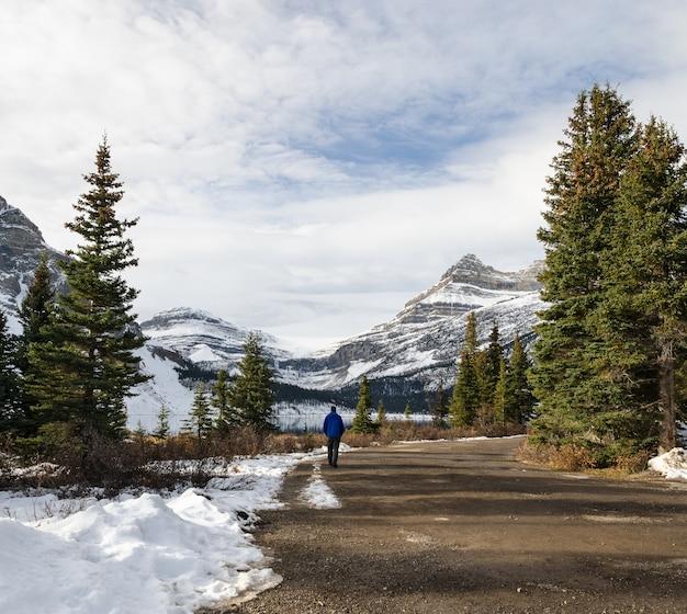Canadian rockies mountain i ścieżka do bow lake w parku narodowym banff, alberta, kanada
