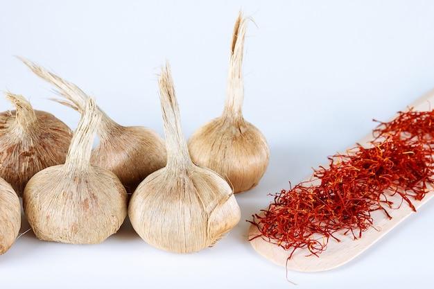 Cebulki krokusa sativus, sucha przyprawa szafran w drewnianą łyżką na białym tle. sadzenie krokusów sativus.