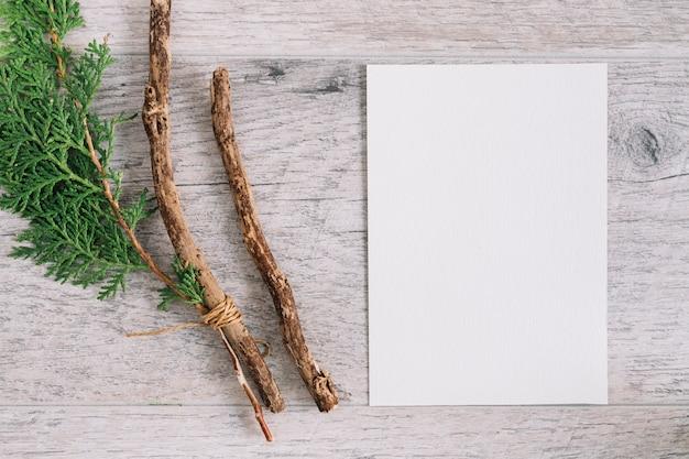 Cedrowa gałązka i gałąź z pustym białym papierem na drewnianym tle