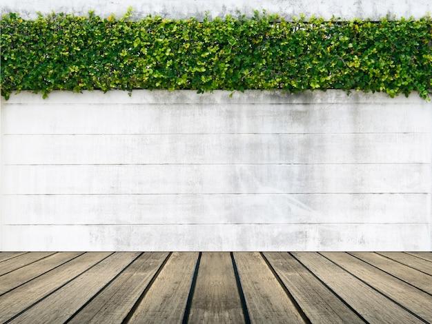 Cementowa ściana i zielony liść dla tła