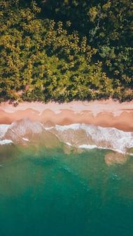 Cenital dronowe zdjęcia dziewiczej plaży
