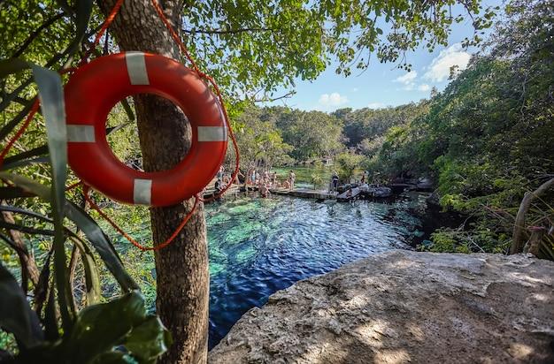 Cenote azul w meksyku #11