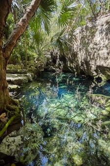 Cenote azul w meksyku #2