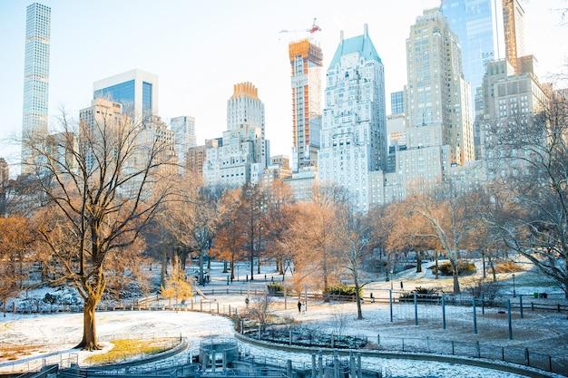 Central park zimą, nowy jork, usa
