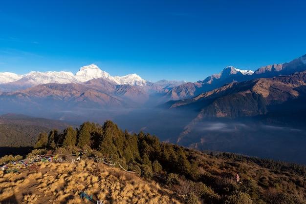Charakter widok pasmo górskie himalajów w punkcie widzenia wzgórza poon, nepal.