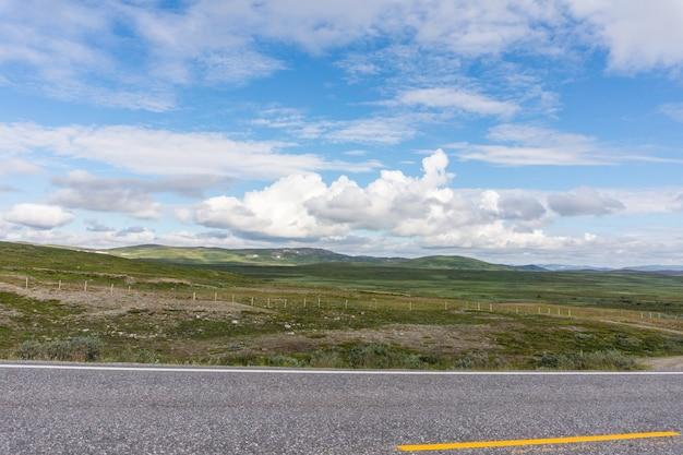 Charakterystyczny krajobraz tundry arktycznej. niskie drzewa, krzewy, trawa, północna norwegia