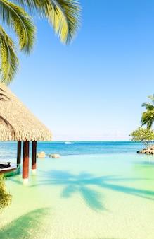 Chata tiki i bar przy basenie luksusowego hotelu w jasny, słoneczny dzień