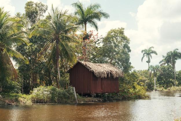 Chata w tropikalnym lesie na brzegu rzeki