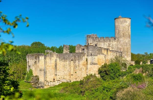 Chateau de rauzan, średniowieczny zamek w departamencie gironde we francji