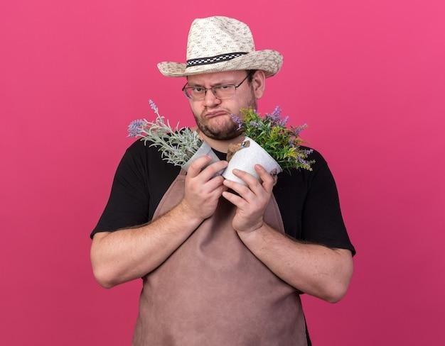 Chciwy młody ogrodnik mężczyzna w kapeluszu ogrodniczym, trzymając kwiaty w doniczkach na białym tle na różowej ścianie
