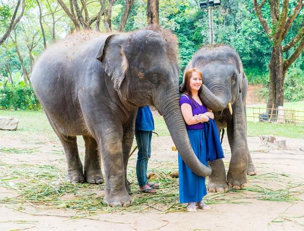 Chiang mai tajlandia, jan, - 3, 2018: turyści z słoniami przy słonia gospodarstwem rolnym