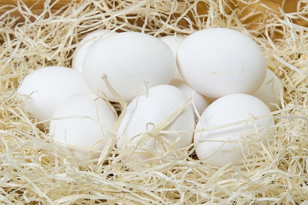 Chiken białych jajek zamknięty up.