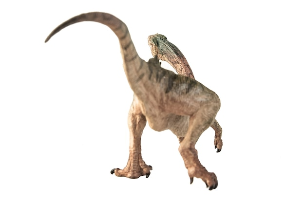 Chilezaur dinozaur na białym tle.