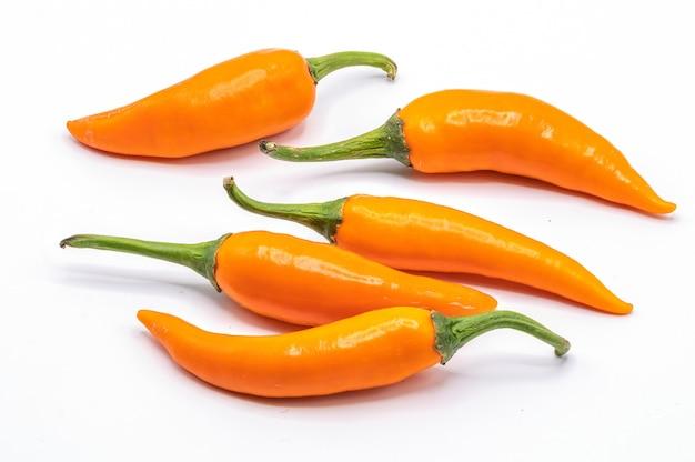 Chili pieprz odizolowywający na białym tle. zamyka w górę pomarańczowego chili na bielu.