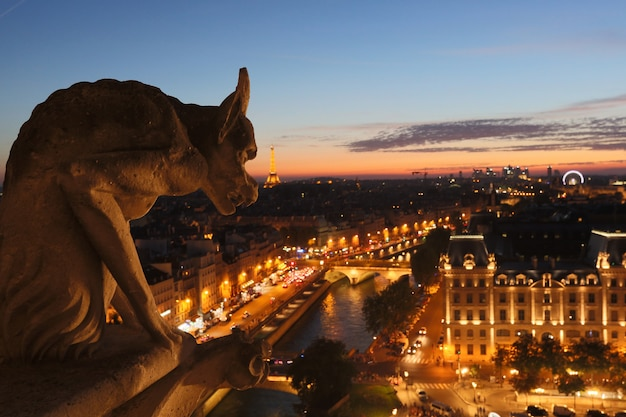 Chimery notre dame