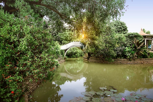 Chińczyka łuku most z stawem i drzewami na parku
