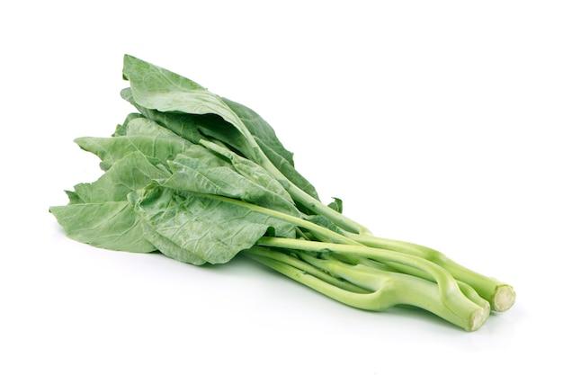Chiński kapusta warzywna na białym tle na białej powierzchni