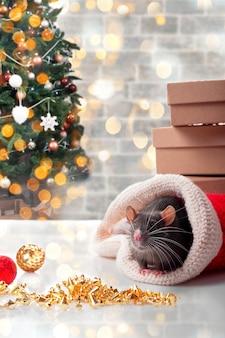Chiński szczęśliwy rok szczura 2020 z ciemnoszarym szczurem z noworocznymi dekoracjami