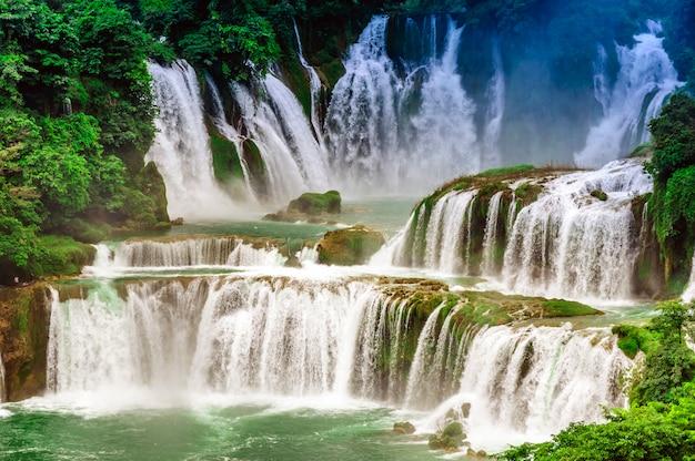 Chiny naturalne park dżungli wietnamie latem
