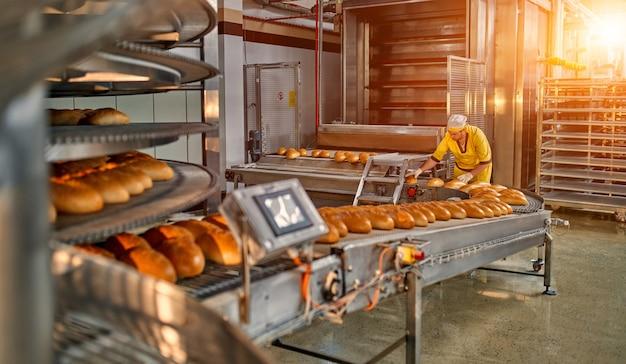 Chleb piekarniczy produkcja fabryczna żywności ze świeżych produktów. zautomatyzowana produkcja wyrobów piekarniczych.
