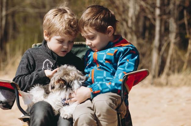 Chłopcy bawią się szczeniakiem yorkshire terriera siedzącego na krześle na plaży