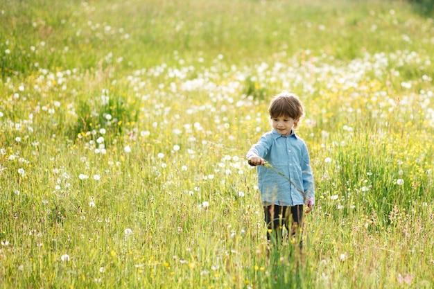Chłopiec 3-4 lata spaceruje po łące, spacerując i bawiąc się na łące