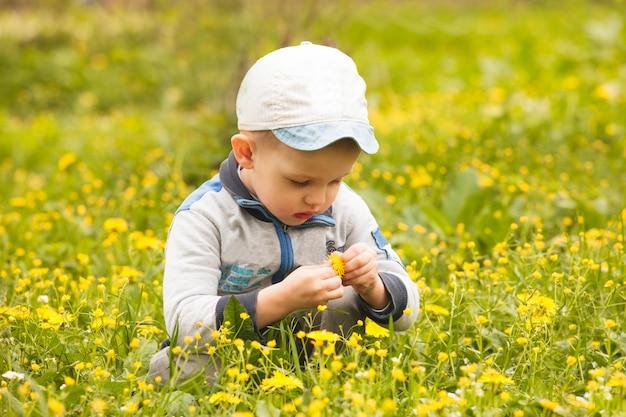 Chłopiec bawi się kwiatami na łąkach