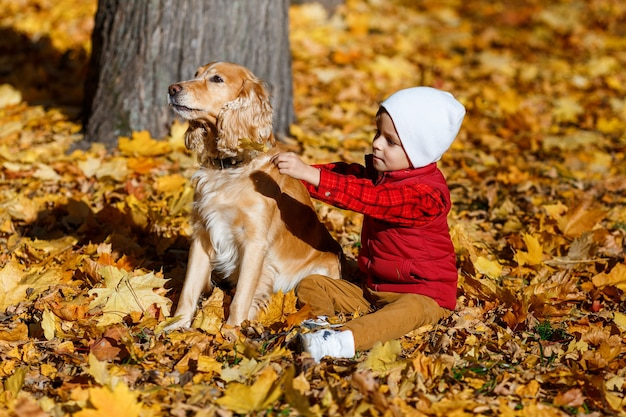 Chłopiec bawiący się z psem małe dziecko bawi się w jesiennym parku przyjaźń między dziećmi a zwierzętami