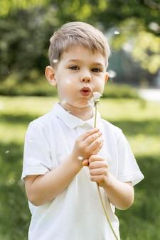 Chłopiec dmucha kwiatu na wietrze