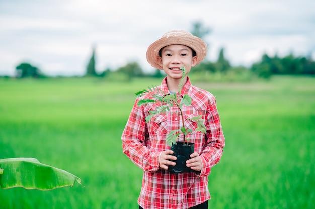 Chłopiec dzieci trzymający sadzenie drzewa pomarańczowego do sadzenia drzewa w ekologicznym ogrodzie uprawnym