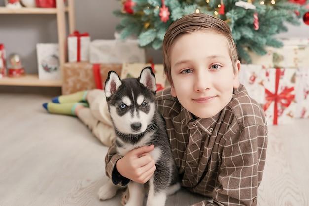 Chłopiec dziecko z psami husky szczeniaki i choinkę.