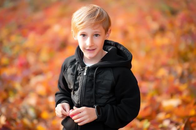 Chłopiec na pięknym tle rozmytych jesiennych liści, trzymając w rękach liść.