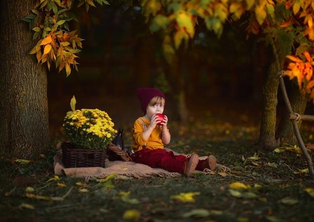 Chłopiec siedzi na grabijącej szkockiej kracie w lesie i je czerwonego jabłka. jesienne tło. skopiuj miejsce