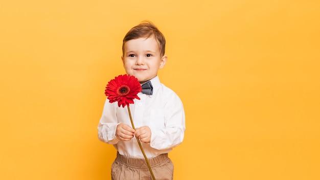 Chłopiec w białej koszuli, spodniach i muszce trzyma w rękach kwiat gerbera.
