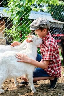 Chłopiec w czapce głaska koziołka na farmie