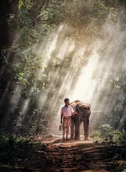 Chłopiec z dziecko słoniem w lesie