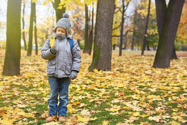 Chłopiec z liściem