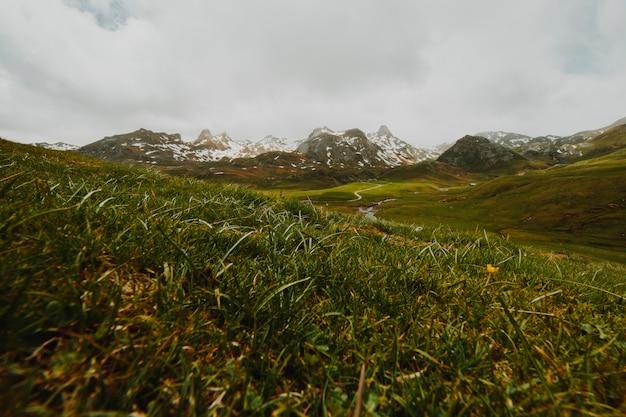 Chmurny skalisty krajobraz z roślinnością