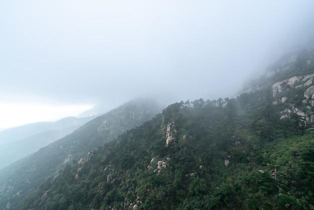 Chmury i mgła w parku