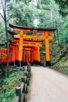 Chodnik fushimi inari czerwony torii w japonii